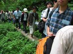 2004_summer_111.jpg
